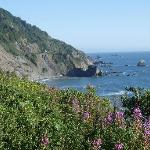 Enderts Beach near Crescent City