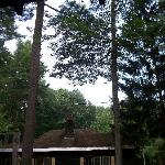 Photo de Pine Grove Cottages