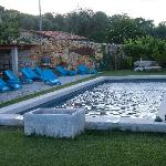 swimming pool between vineyards