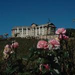 Mitten in der sanften sanften Landschaft erhebt sich das Hotel Spa do Vinho.