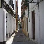 صورة فوتوغرافية لـ Bodegas Mezquita Corregidor