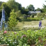 Glyndwr Vineyard Bed and Breakfast and garden