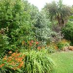 Their gardens