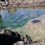 lago delle ondine