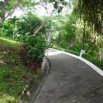 En armonia con la naturaleza mientras hacemos recorridos por el hotel!!! :)