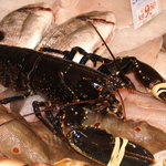 Fresh Lobster Available