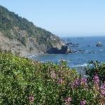 Coast, 20 minutes