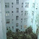 window looking into the garden, very quiet