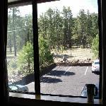 Wald um das Hotel herum