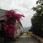 Photo de Agriturismo Fondo Cipollate