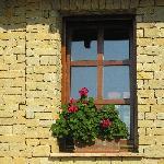 charming window on patio