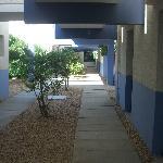 patio accès logement