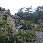 Brandy Farm