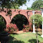 Thr garden