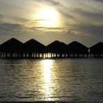 les waterbungalows