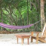 hammock on the beack