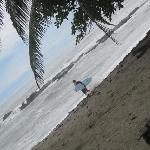 surfers' paradise