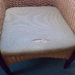 Sitzkissen Korbsessel Zimmer