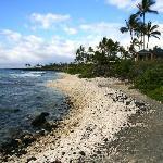 Trail near Hilton Waikoloa Village