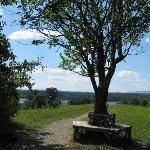 Poets Walk Rhinebeck NY