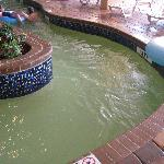 Green indoor lazy river.  Water looked bad for entire 9 day visit.
