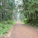 Hiking trail near the house