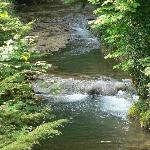 autre vue du ruisseau