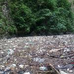 Cañón del Sumidero. Chiapas. Mexico. Una horrible mancha de basura... ups