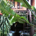 Back of Hotel from garden