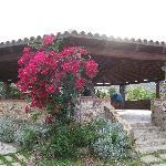 Pavillon mit Bouganvillea