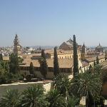 la mosquée vue de l'alcazar