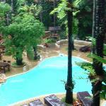 la piscina e l'orto botanico dell'albergo