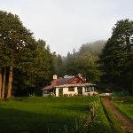 The Forest Guest house