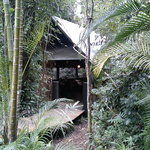 Photo of The Cassowary Cafe