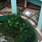 oasis in the foyer