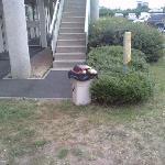 les poubelles non vidées