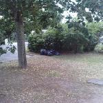 les sacs poubelles sur la pelouse