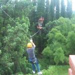 Zipping thru the trees