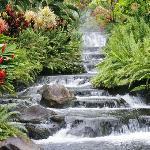 Greensprings Vacation Resort Foto
