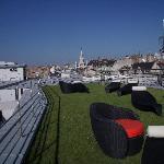 Roof grassed area