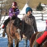 beim Pony reietn