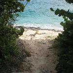 Coastal Path- Bermuda's South Shore Park