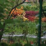 Blick über den See im Garten