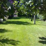 parte del giardino del B&B Laura