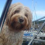 Ted at Portavadie