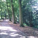 Nice track for running just 5 minutes away