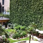 Garden in back of hotel