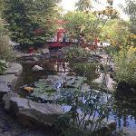 "The ""Japanese style"" garden"
