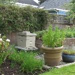 Beehive and Herb Garden