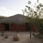 Mehari Zaafrane resmi